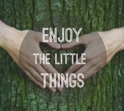 Inspirational motivating quote. On natural background. Hands making a heart shape on a trunk of a tree Stock Photos