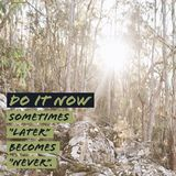 Inspirational motivational quote `Do it now. Sometimes later becomes never.`. With mountain and sun background stock image
