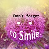 Inspirational quote about smile. Inspirational Motivational quote `don`t forget to smile` on blurred flower background with vintage filter Royalty Free Stock Photography