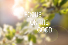Inspirational motivational quote. Focus on the good. wise saying on soft background. Of nature Royalty Free Stock Image