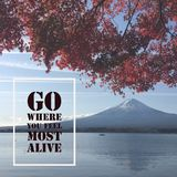 Inspirational motivational quote `go where you feel most alive`. On Mountain Fuji with autumn leaves background Stock Photos