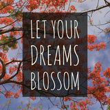 Inspirational motivational quote `Let your dreams blossom.`. On orange flowers background stock photo