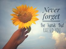 Inspirational motivational quote - Never forget the hands that raised you. With background of blue sky and beautiful sunflower