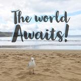 Inspirational motivational quote `The world awaits`. With seagull on sandy beach background stock images