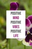 Inspirational positieve vibes positieve leven van de affiche Positieve mening royalty-vrije stock fotografie