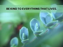 Inspirational quote `be kind to everything that lives`. On blurred background with vintage filter Royalty Free Stock Image