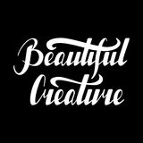 Inspirational quote Beautiful creature. Hand written retro lettering Beautiful creature made in vector. Vintage letters design with cute stars. Postcard Stock Image