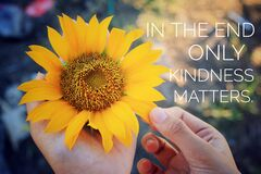 Inspirational quote - In the end only kindness matters. With Sunflower blossom in hands. Keep being nice, be kind concept