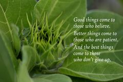 Free Inspirational Quote - Good Things Come To Those Who Believe. Better Things Come To Those Who Are Patient. Stock Photo - 175905960