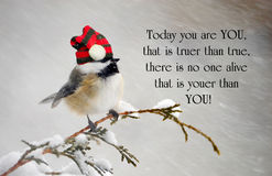 Inspirational quote. About individuality by Dr. Suess, with a cute chickadee wearing his Christmas hat during a snowstorm royalty free stock photography