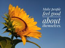 Kindness inspirational quote to make people feel good about themselves with sunflowers blooming. stock image