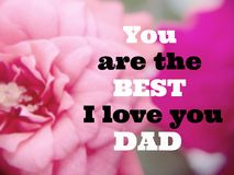 Inspirational quote. Inspirational  Motivational quote `You are the best I love you dad` on blurred flower background with vintage filter Stock Photos