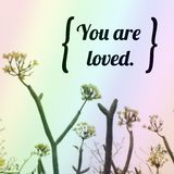 Inspirational quote. Inspirational Motivational quote `you are loved` on blurred flowers background Royalty Free Stock Photos
