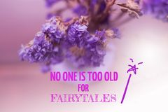 Inspirational quote. `no one is too old for fairytales` on blurred background with vintage filter Royalty Free Stock Photography