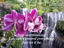 Inspirational quote- Stop overthinking. You can`t control everything. Just let it be. With beautiful purple orchid and blurry stock photos