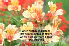 Free Inspirational Quote - When We Truly Understand That We Are Spiritual In Nature, We Will No Longer Have A Need For Recognition. Royalty Free Stock Images - 176601479