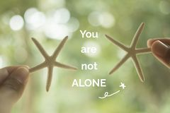 Inspirational quote `you are not alone`. On starfish blurred background Stock Image