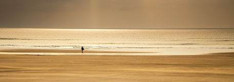 Inspirational Surfing Landscape Panoramic, lone surfer by tide a Royalty Free Stock Images