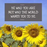 Inspirational Typographic Quote - be who you are on blurred back Royalty Free Stock Photos
