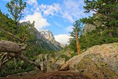 Inspirationspunktspur im großartigen Nationalpark Teton lizenzfreie stockfotos