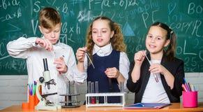 inspire Kleine Kinder wissenschaft Kleinkindwissenschaftler, der Chemie im Schullabor erwirbt Chemiewissenschaft biologie stockbilder