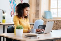 Inspired woman working on her laptop. Feeling inspired. Pretty concentrated young curly-haired woman working on her laptop and sitting at the table while working Stock Photos