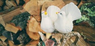 Inspirera fågelstatyetter arkivbilder