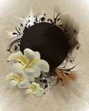 inspirerad orienteringstappning för blomma Arkivbild