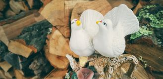 Inspiring birds figurines. And wooden texture stock images