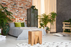 Inspiring botanic bedroom Stock Photos