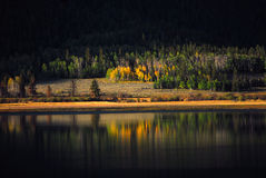 Inspiring Color. Early fall color at Twin lakes Colorado stock image