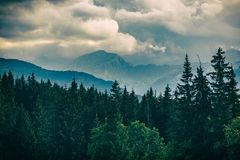 Inspiring Mountains Landscape, beautiful summer day in Tatras, P Royalty Free Stock Photography
