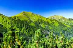 Inspiring Mountains Landscape, sunny day in summer Tatras Stock Photo
