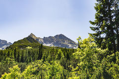 Inspiring Mountains Landscape View, summer in Tatras Royalty Free Stock Photography