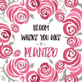 Inspiring quote 'Bloom where you are planted' hand painted brush lettering on the hand painted rose backdrop. Royalty Free Stock Images