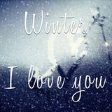 Inspiring quote with winter I love you Royalty Free Stock Photos