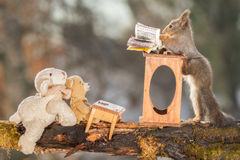 Inspiring teacher. Red squirrel is standing at a desk with bear and sheep Royalty Free Stock Image