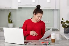 Inspirowana ciężarna młoda kobieta posiada biznesowej firmy, pracy na pieniężnym raporcie, robi online ankiecie, patrzeje attenti zdjęcie stock