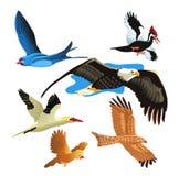 inställda fåglar stock illustrationer