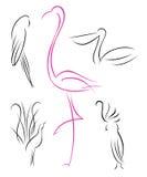 inställda fåglar Royaltyfria Foton