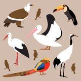 inställda fåglar också vektor för coreldrawillustration Arkivfoton