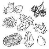 Inställda frukt och grönsaker Royaltyfri Bild