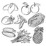 Inställda frukt och grönsaker Royaltyfri Foto