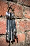 inställda hängande tangenter Royaltyfri Bild