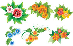 inställda kulöra blommor Arkivfoto