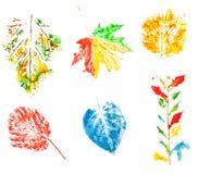 inställda leaves vektor illustrationer