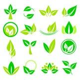 Inställda Leaves Royaltyfria Bilder