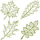 inställda leavespictogramväxter Stock Illustrationer