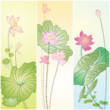 inställda lotusblommamodeller royaltyfri illustrationer