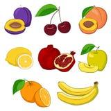 inställda nya frukter vektor illustrationer